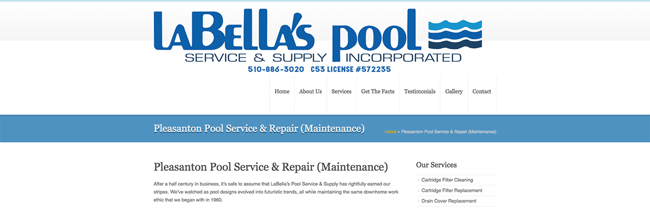 Pleasanton_Pool_Service_&_Repair_Maintenance
